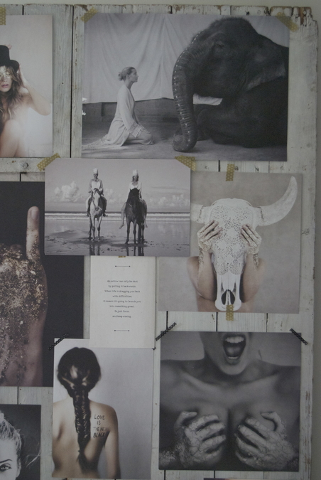 LOVE WARRIORS - MOOD BOARD PORTFOLIO